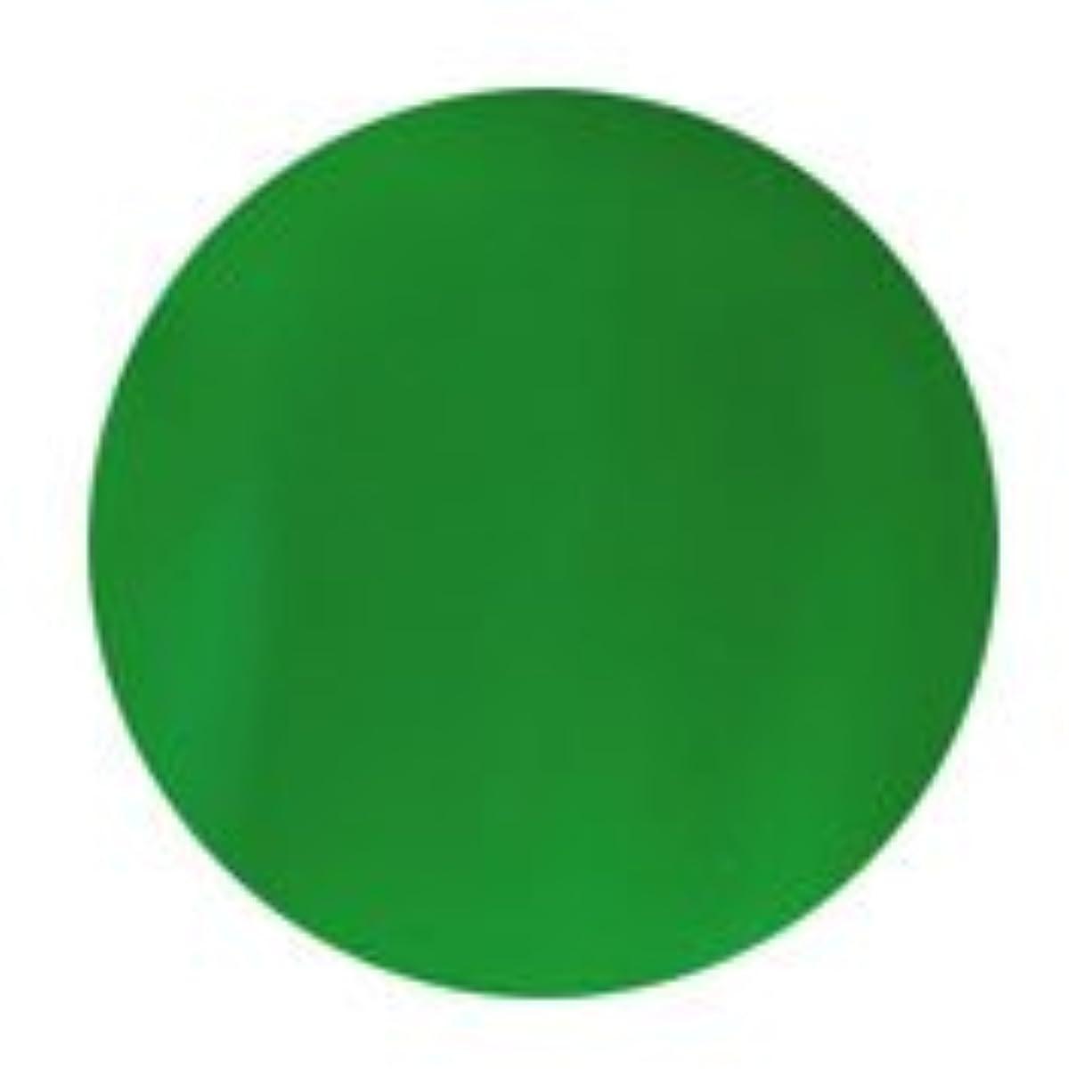パキスタン人軽食バーマドPutiel(プティール) カラージェル ポップ 3g<BR>P14 ネオングリーン