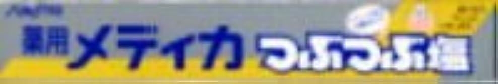 自伝ワークショップ天皇サンスター 薬用メディカ つぶつぶ塩 170g×80点セット (4901616005266)