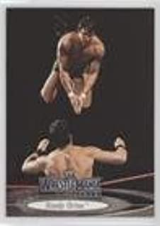 Randy Orton (Trading Card) 2003 Fleer Wrestlemania XIX - [Base] #44