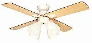 阪和 plusmore シーリングファン Windouble (ウィンダブル) 6灯 BIG-102 WH(ホワイト)