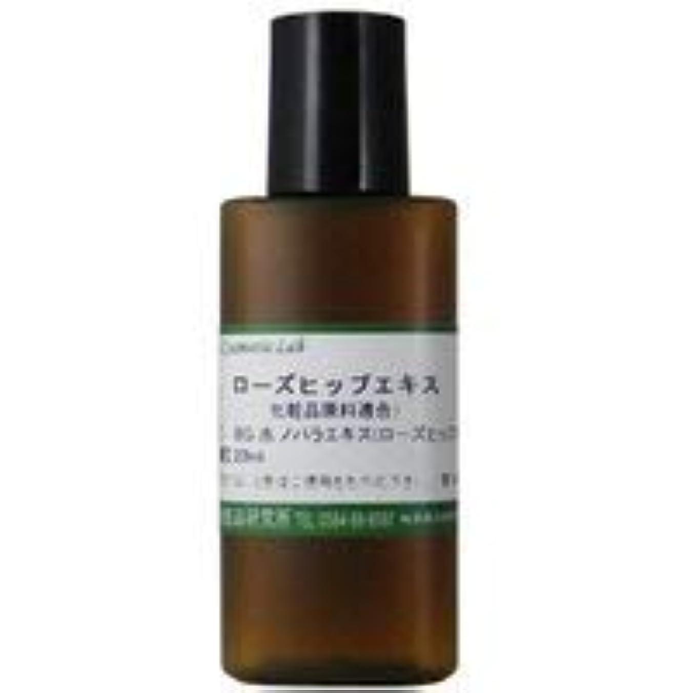 エキゾチック生産的慰めローズヒップエキス 20ml 【手作り化粧品原料】