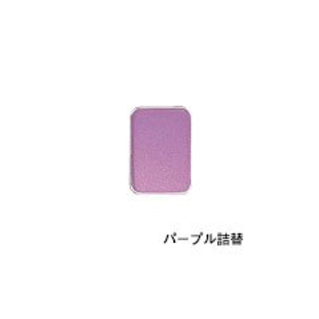 密度マニアゴールデンリマナチュラル ピュアアイカラー 詰替用 パープル×2個       JAN:4514991230446
