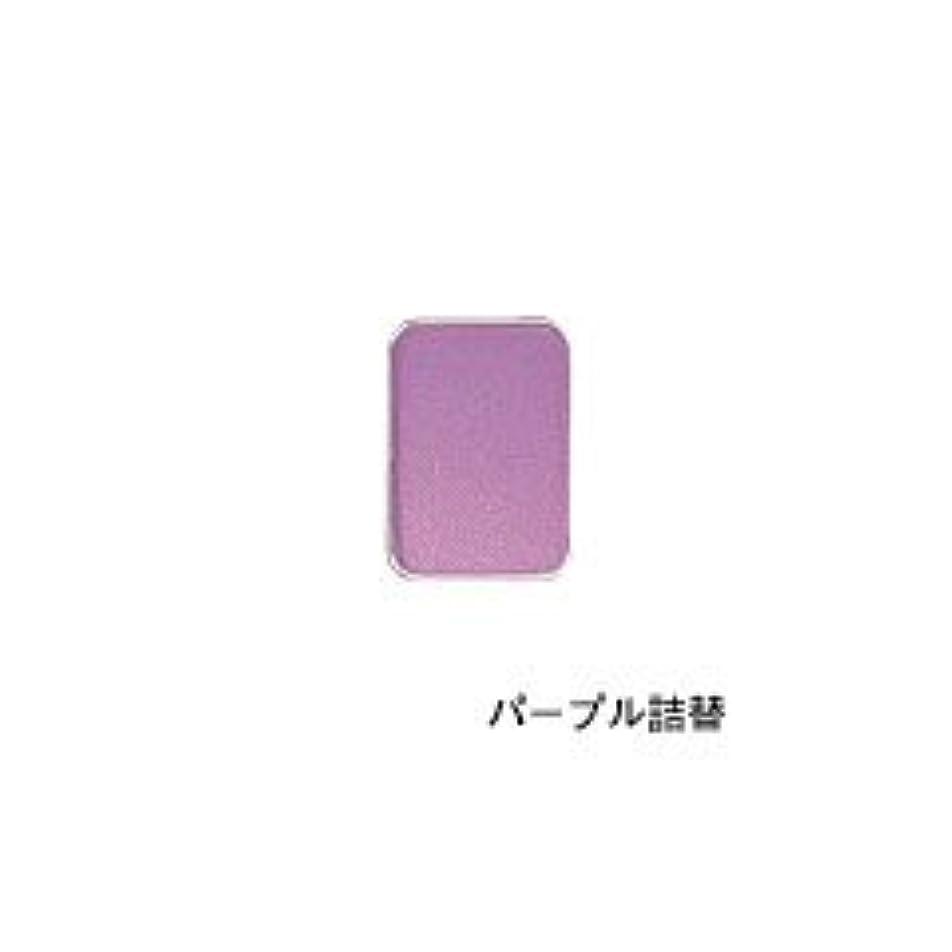 あからさまサリーダルセットリマナチュラル ピュアアイカラー 詰替用 パープル×2個       JAN:4514991230446