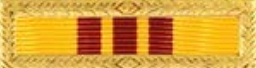 Medals of America RVN Presidential Unit Citation Air Force Navy Coast Guard Marine Corps Multicolored S