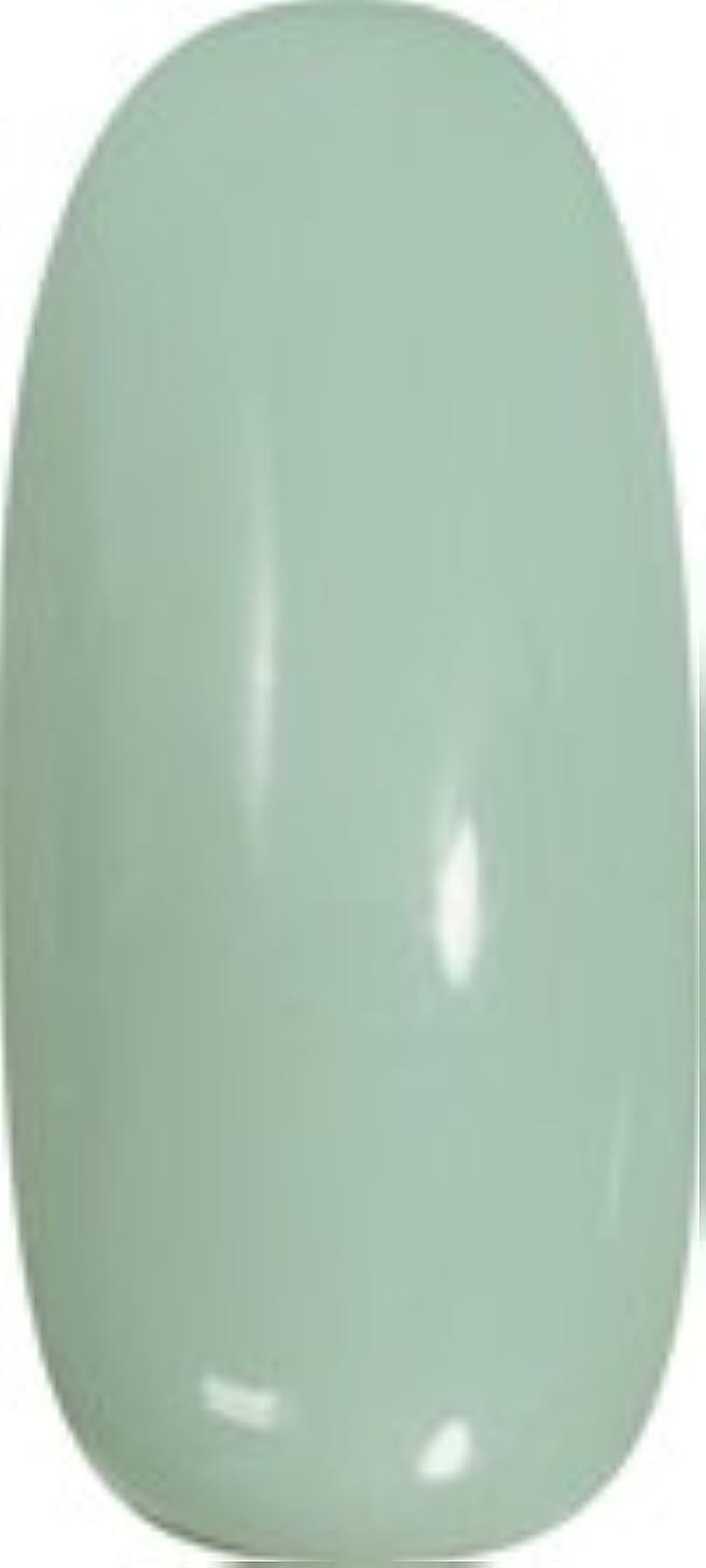 ゴシップセラフボス★para gel(パラジェル) アートカラージェル 4g<BR>AMD17 アイスミント