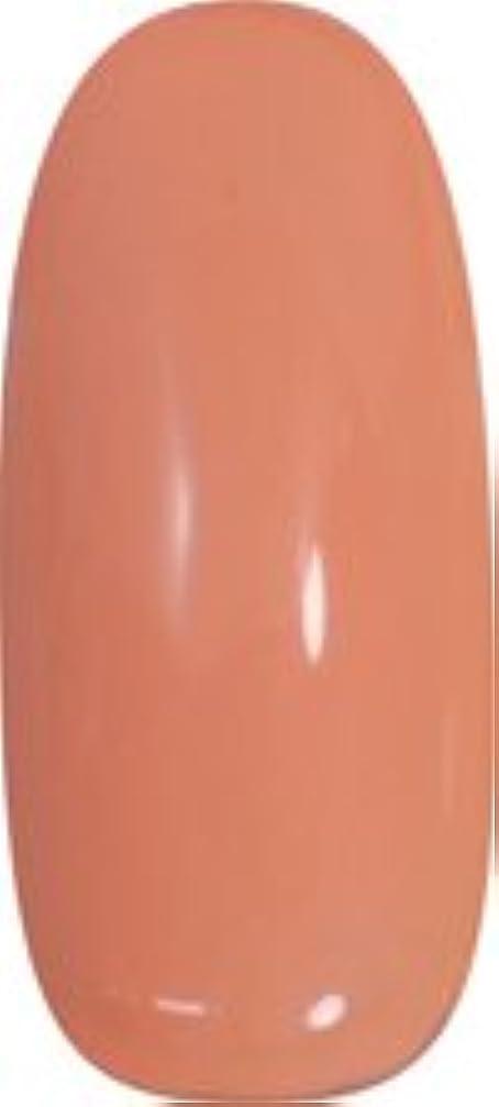 ちょうつがい十分肌寒い★para gel(パラジェル) アートカラージェル 4g<BR>AM5 ミルキーキャロット