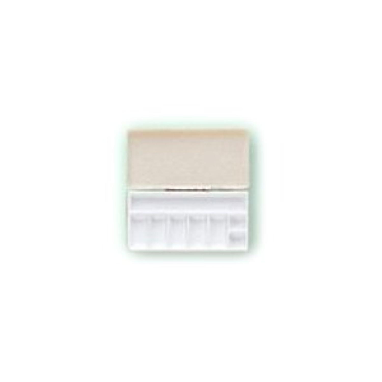 成熟した寄生虫偽装する三善 パレット メイクアップパレット 携帯用パレット 106×53mmサイズ 1