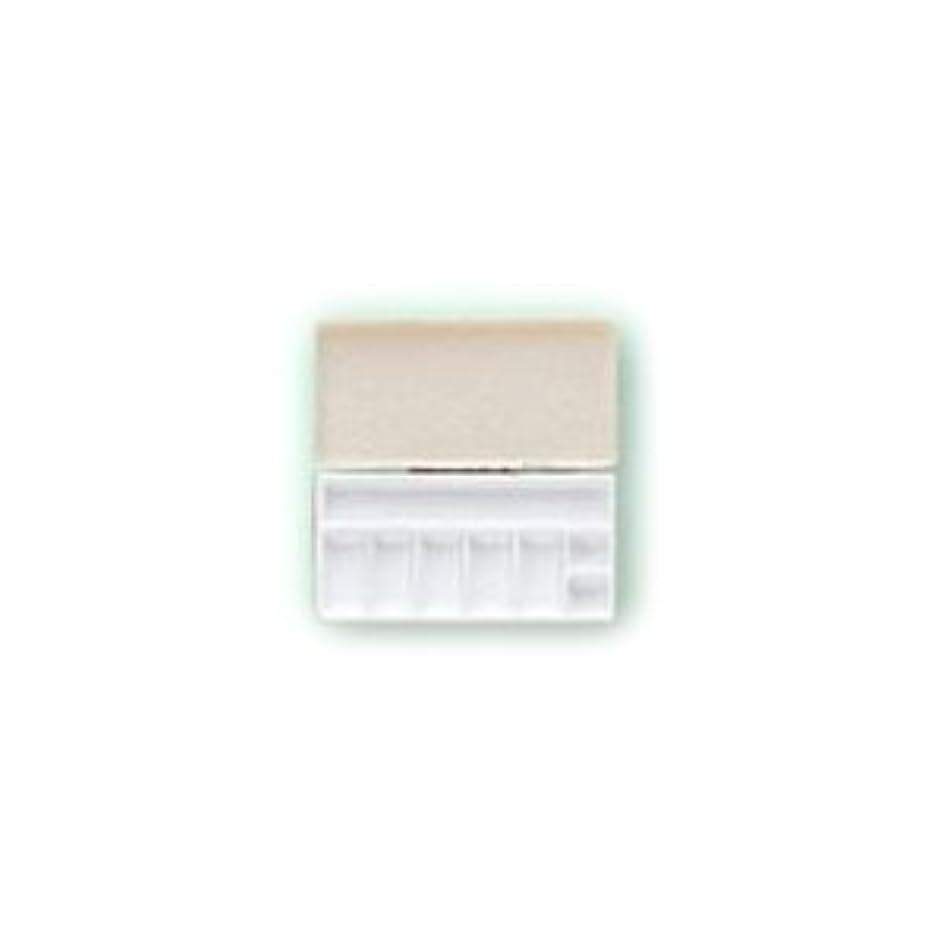 ブース環境保護主義者交流する三善 パレット メイクアップパレット 携帯用パレット 106×53mmサイズ 1
