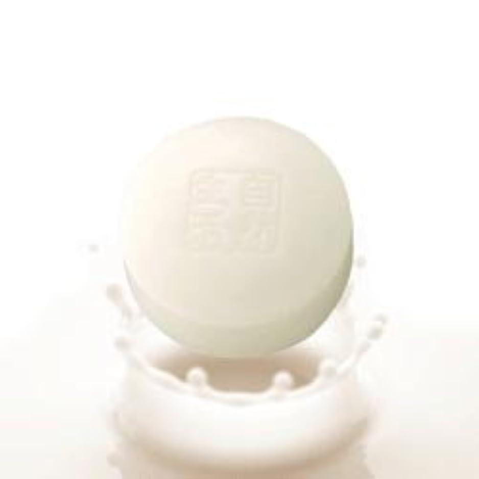 改修経済的アライアンス豆腐の盛田屋 豆乳せっけん 100g