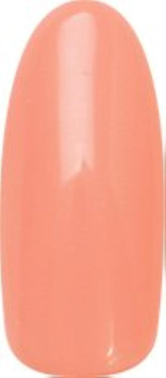 うれしい割合十分★para gel(パラジェル) デザイナーズカラージェル 4g<BR>DN01 ハワイアンホリデー