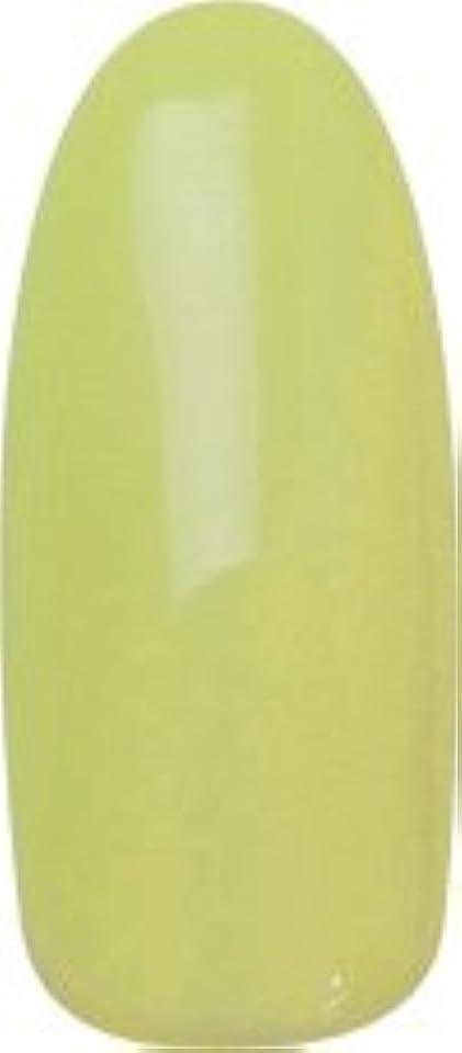 導入する目を覚ますレビュー★para gel(パラジェル) デザイナーズカラージェル 4g<BR>DL04 グリーンアップル