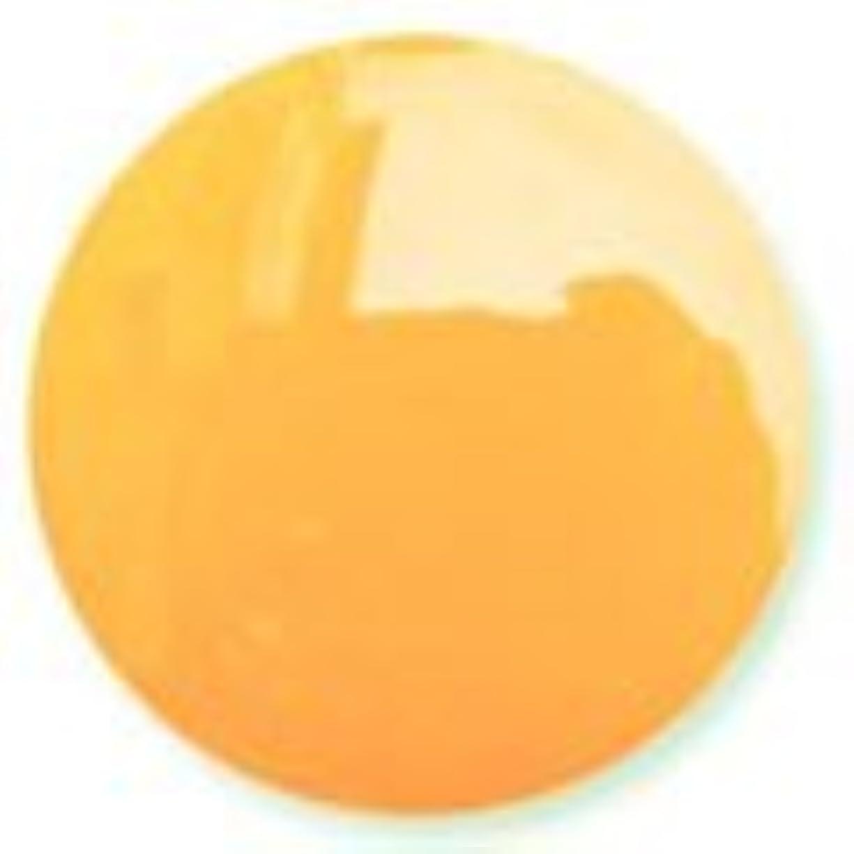 恥ずかしいガイドライン科学者ハニーオレンジ ソークオフジェル(ソフトジェル)LED/UV対応 8g NC016