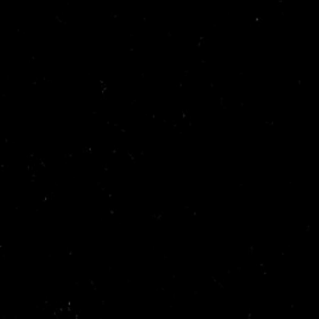 蒸留するジョガーハイブリッド東リ エトウィール1000 EJ6314-455 本間8畳 (382×382cm)