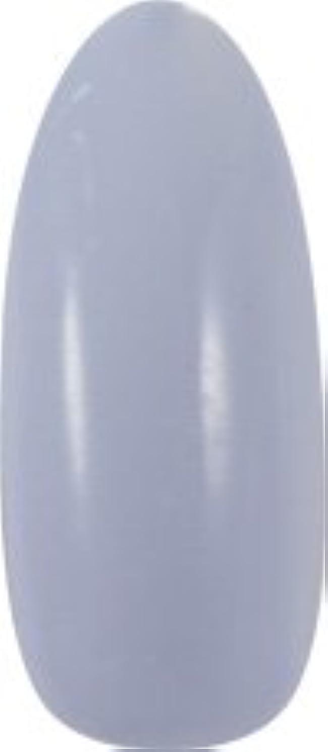 稼ぐキー同一性★para gel(パラジェル) アートカラージェル 4g<BR>AMD21 グレーブルー