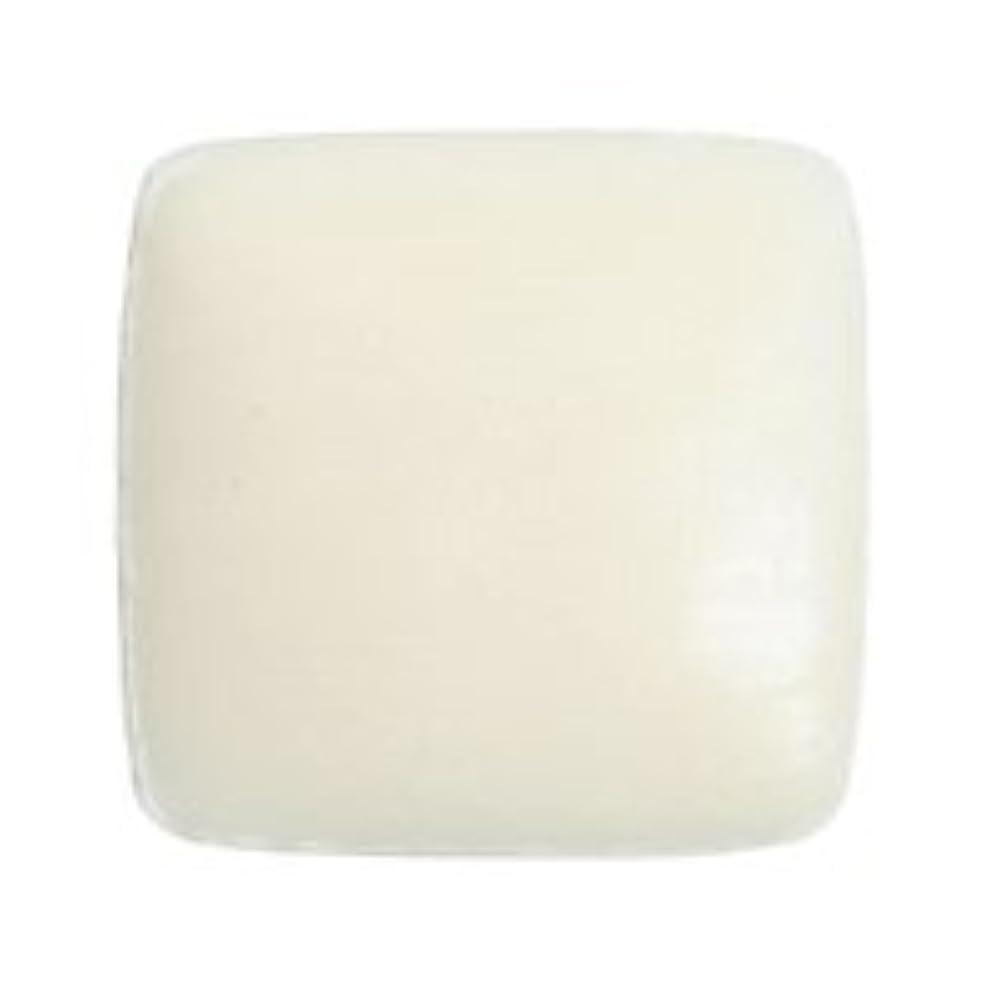 尾海上申し込むドクターY ホワイトクレイソープ80g 固形石鹸