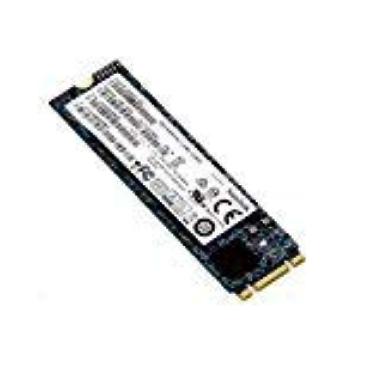 ピンチ入浴満足させる純正 HP 256GB SSD ハードドライブ 821680-001 (再生品)