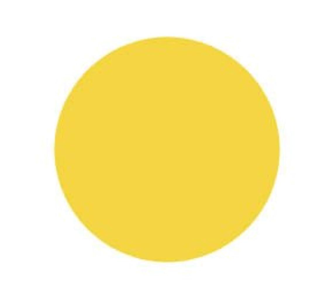 に負けるフラグラント手首バイオスカルプチュア(バイオジェル) カラージェル 〔4g〕 (2) 2030:ダッフォディル