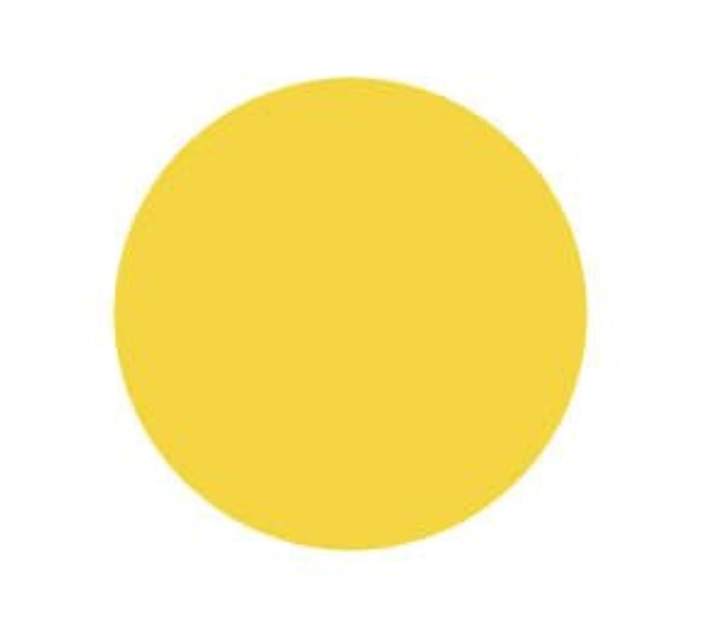 スリップ論理的残るバイオスカルプチュア(バイオジェル) カラージェル 〔4g〕 (2) 2030:ダッフォディル