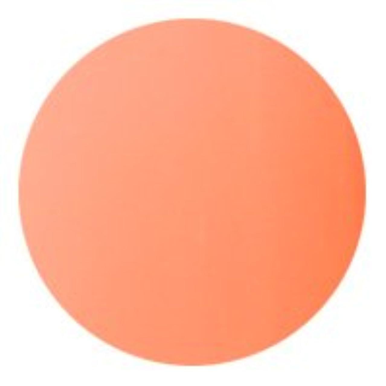 変換密輸★AKZENTZ(アクセンツ) UV/LED オプションズ 4g<BR>080 サーモンピンク