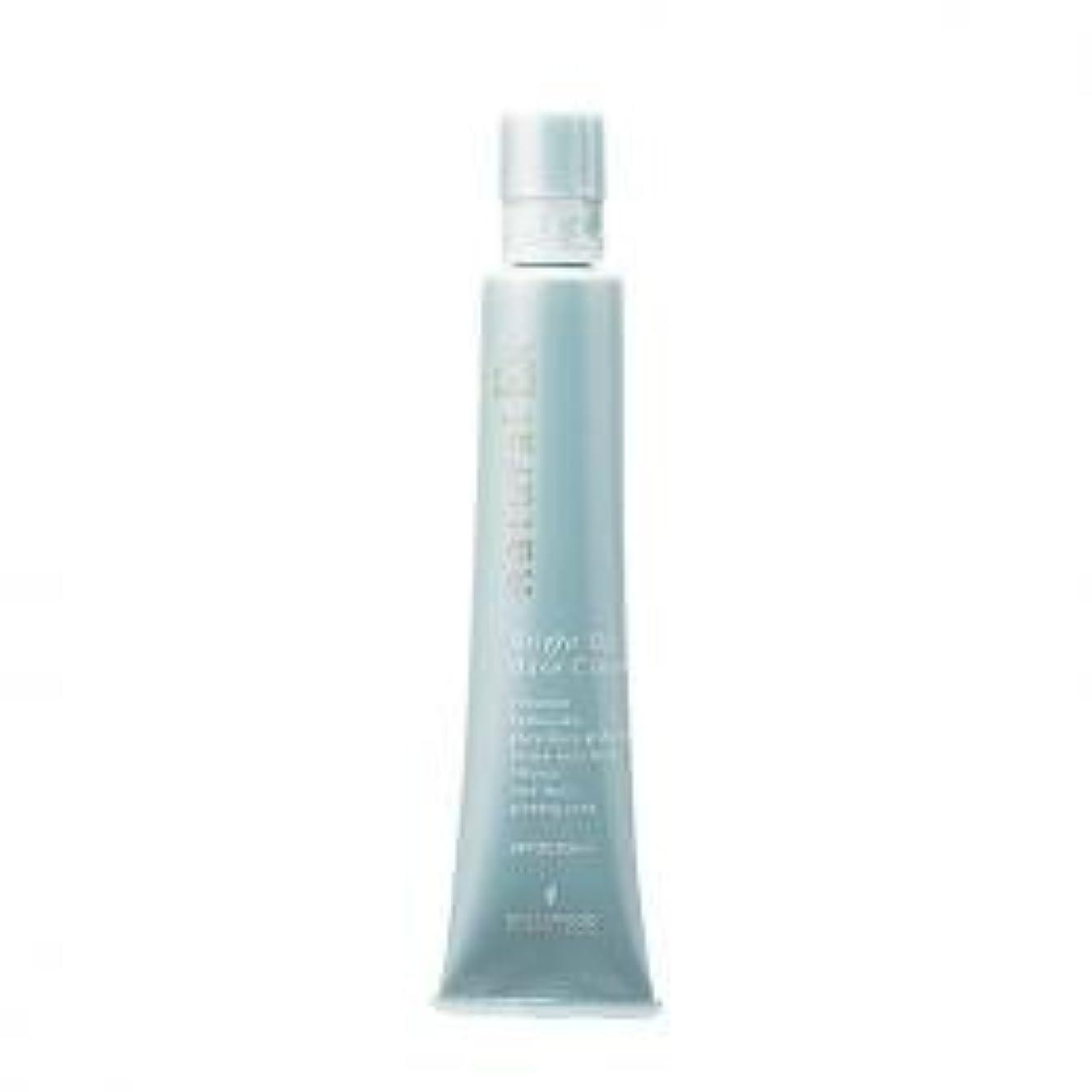 虫ふつう疎外ハリウッド化粧品 ナチュラルEX ブライトアップ ベースクリーム h 35g SPF30 PA++