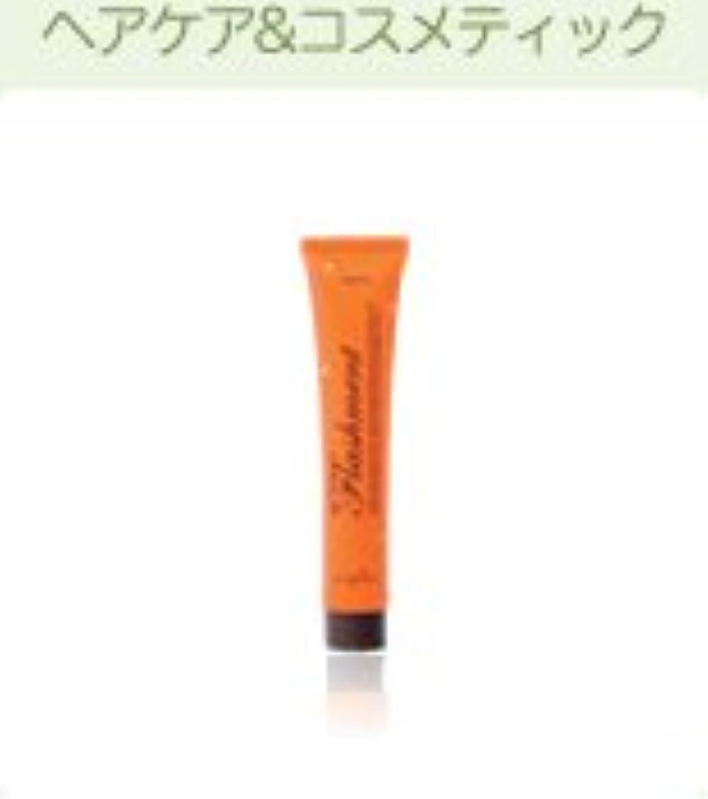留め金ファイバ未亡人【X5個セット】 ナプラ ナピュア フラッシュメント モイスチャーヘアパック 50g