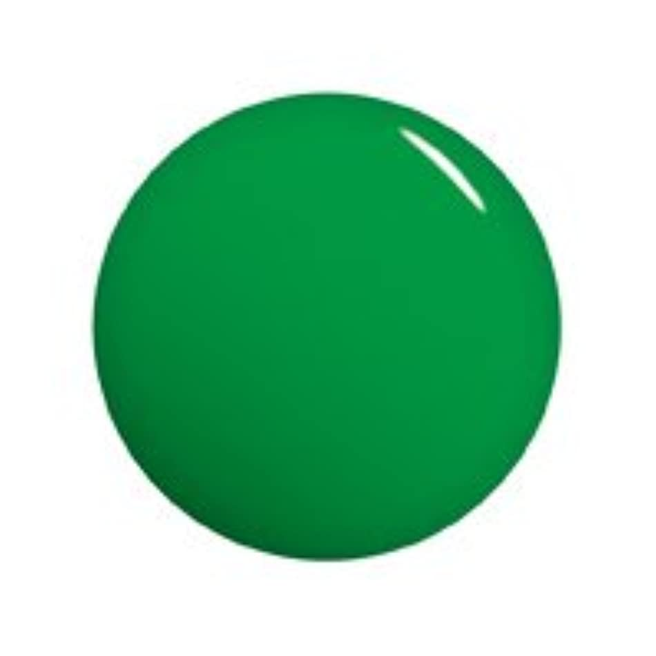 昨日ガラガラ動機Gelgraph(ジェルグラフ) カラージェル 5g グラスホッパー 028M