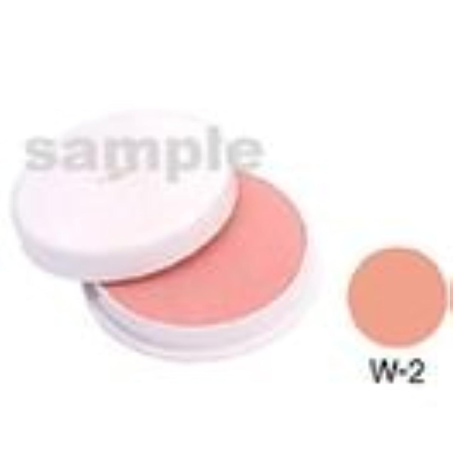 乱れオーガニック治療三善 フェースケーキ W-2