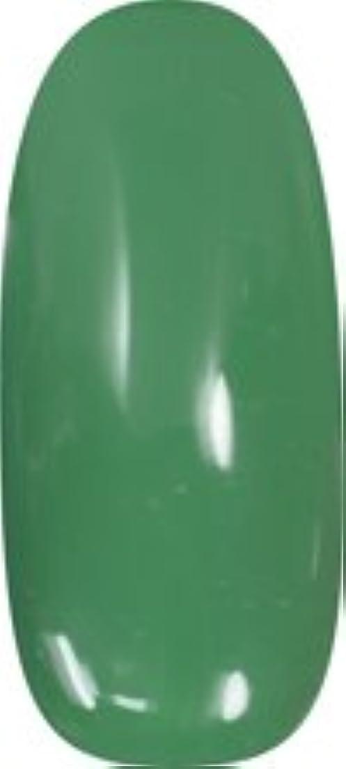 お世話になった交差点チャペル★para gel(パラジェル) アートカラージェル 4g<BR>AR17 クリスマスグリーン