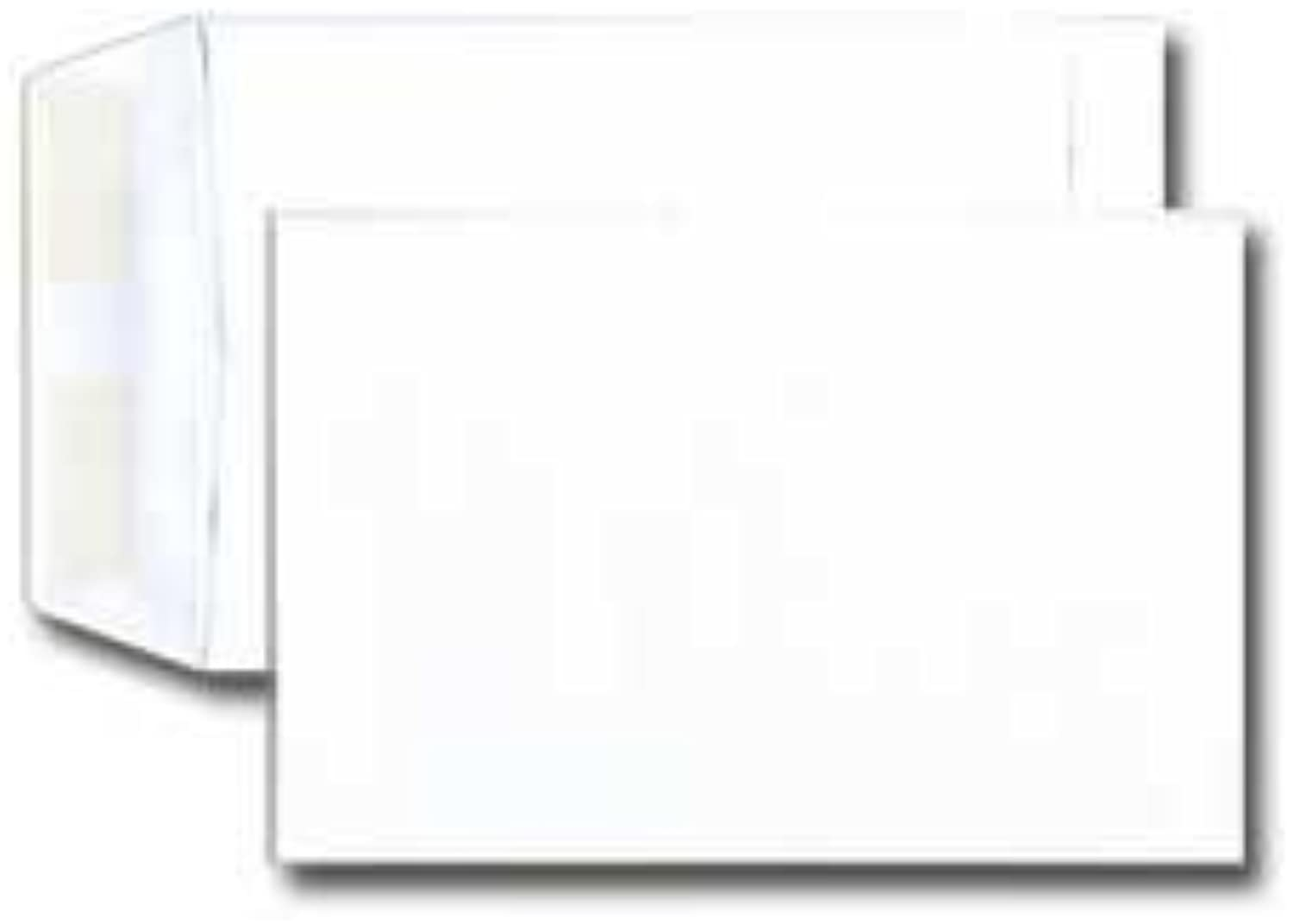 9 3 4 Catalog Envelope - Open End - 24  Weiß (8 3 4 x 11 1 4) - Large Envelope Series (Box of 500) by Office Express B0141MEPMG | Shop