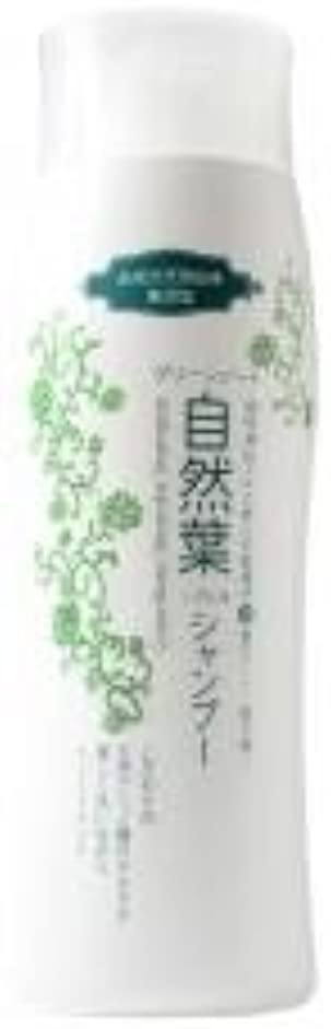 誤解するハンディキャラバングリーンノート 18種天然アミノ酸 自然葉シャンプー 300ml   6本セット