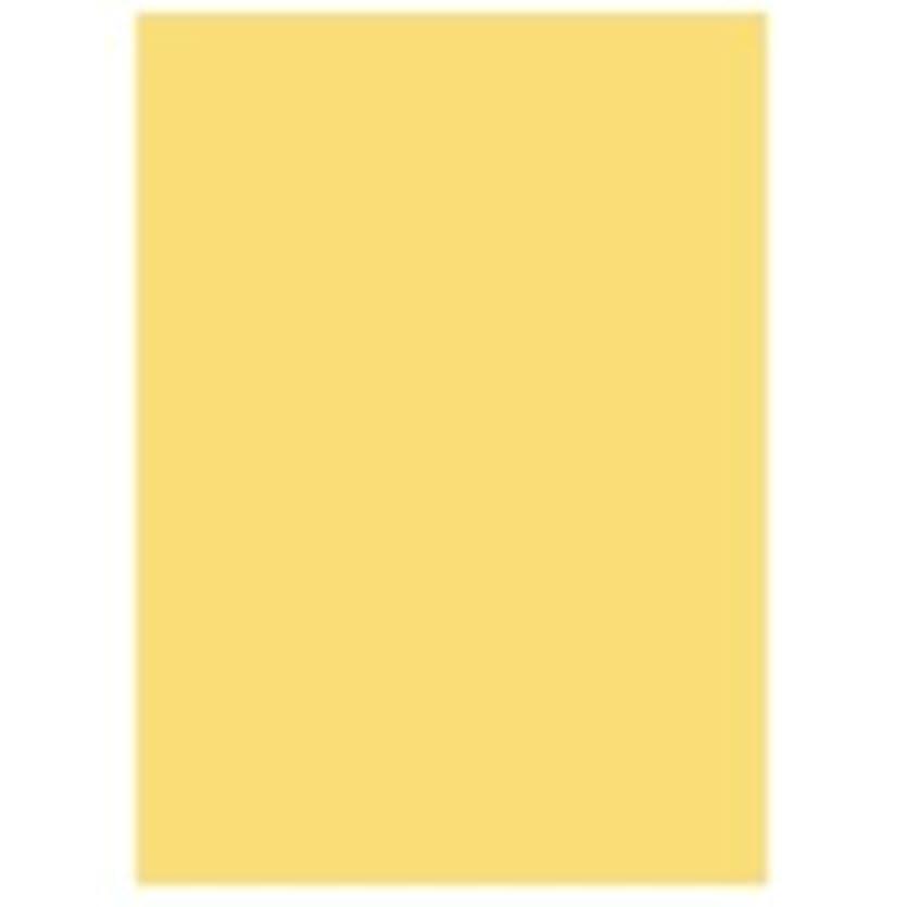 適合する薄暗い構造北越製紙 カラーペーパー/リサイクルコピー用紙 〔A4 500枚×5冊〕 日本製 イエロー(黄)