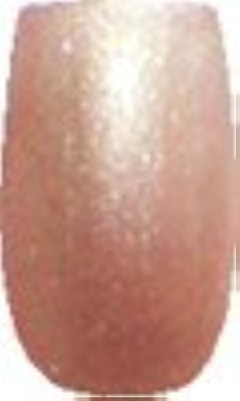 猟犬ケントオレンジソフトジェル 3g Melty パールカプチーノ