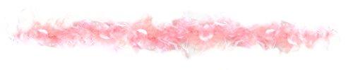 Rire Et Confetti - Fiefla042 - Accessoire pour Déguisement - Boa - 22 G - Rose