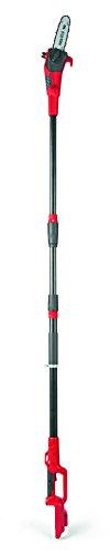 MTD 41 AI0 de qo600 batería de telescópico de podadora