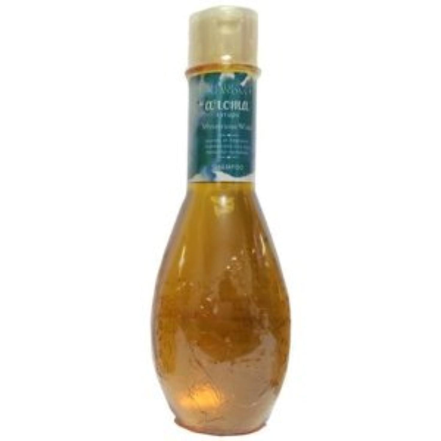 アンカーモンゴメリーるデミ ヘアシーズンズ アロマシロップス ミステリアスウィンド シャンプー <250mL×2個セット> DEMI HAIR SEASONS aloma syrups