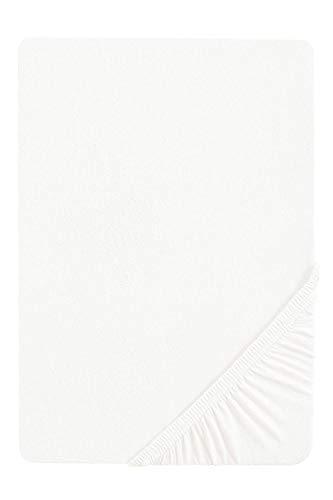 biberna 0077155 Jersey Spannbetttuch (Matratzenhöhe max. 22 cm) (Baumwolle) 180x200 cm -> 200x200cm, weiß
