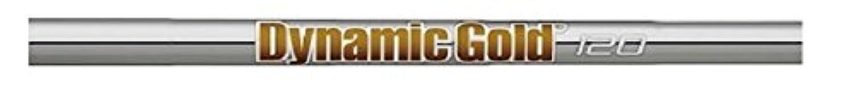 TRUE TEMPER(トゥルーテンパー) シャフト Dynamic Gold ダイナミックゴルド ダイナミックゴルド 120 テーパーアイアンX100#W(37.0インチ) フレックス:X