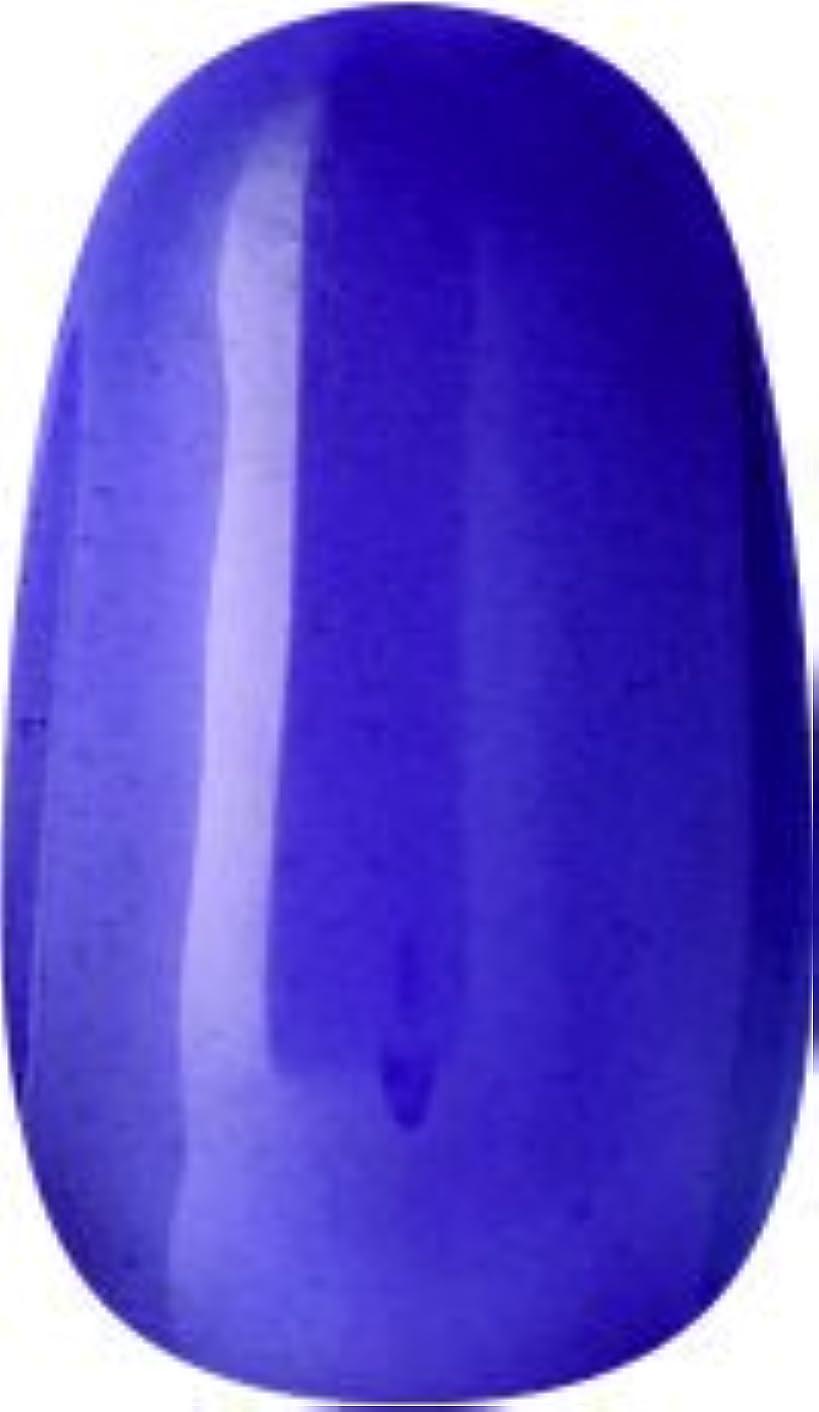 レザー注意考案するラク カラージェル(65-クリアパープル)8g 今話題のラクジェル 素早く仕上カラージェル 抜群の発色とツヤ 国産ポリッシュタイプ オールインワン ワンステップジェルネイル RAKU COLOR GEL #65