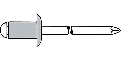 Gesipa main Pince à riveter aluminium 5 x 18 mm Lot de 500
