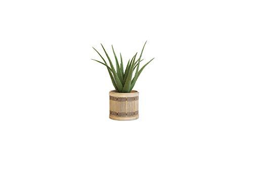 LIFA LIVING Aloe Vera Pianta Finta 50 cm, Pianta Artificiale da Interno, Aloe Vera Piante Finte, Piante Finte da Appartamento con Vaso in Plastica Nero