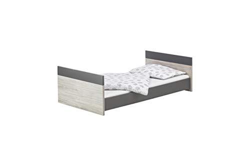 Schardt 04 254 930 00 pages Anthracite de montage pour un lit combiné Clou, 140 cm, GRIS