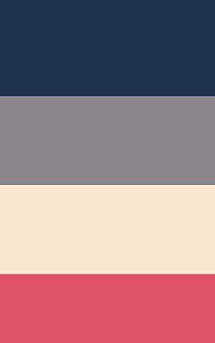 Carnet de mots de passe Internet: à remplir / avec index alphabétique / format pratique (5 x 8 pouces ~ 12,7 x 20,32 cm) / bleu-rose