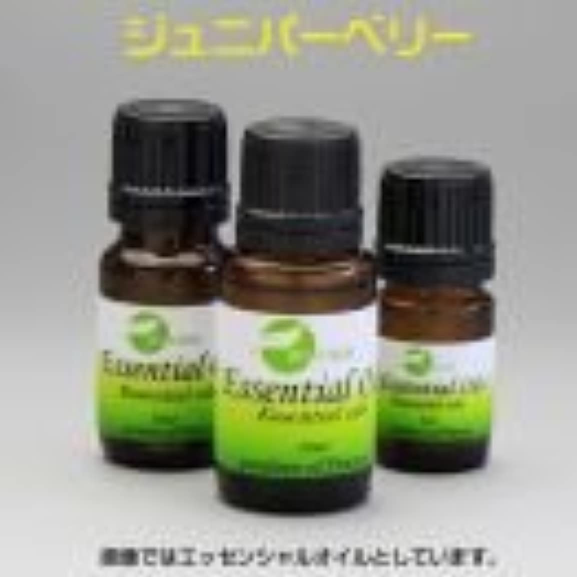 インポート蒸気治安判事[エッセンシャルオイル] 松の針葉に似たフレッシュな樹脂の香り ジュニパーベリー 15ml