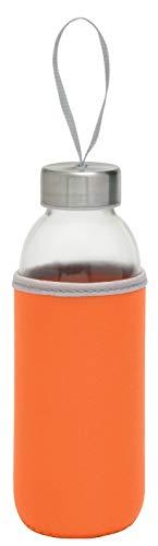 TOPICO 56-0304235 TAKE WELL - Botella de cristal y acero inoxidable