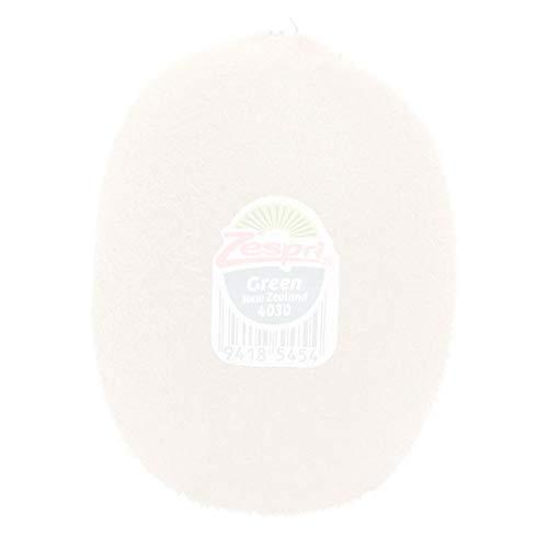 丸和商店 <ニュージーランド産> ニュージーランド産 ゼスプリ グリーンキウィ 1kg / New Zealand, Zespri, Green Kiwi Fruit, 1kg