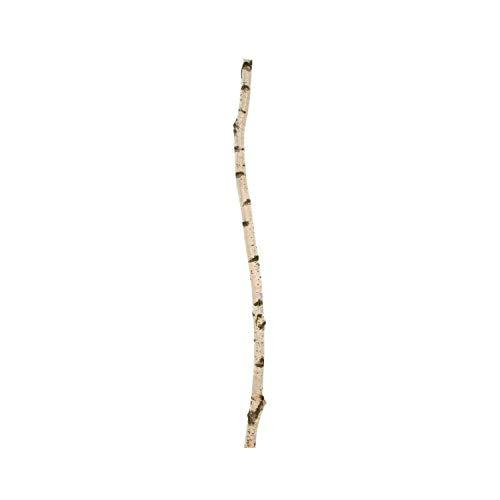 Zweigedeko Birkenstamm 150 cm, Durchmesser ± 3 cm