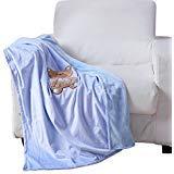 Noble House Baby Receiving Blanket, Soft Plush Cozy Adorable Design, 30'x40' (Teddy Bear Blue)