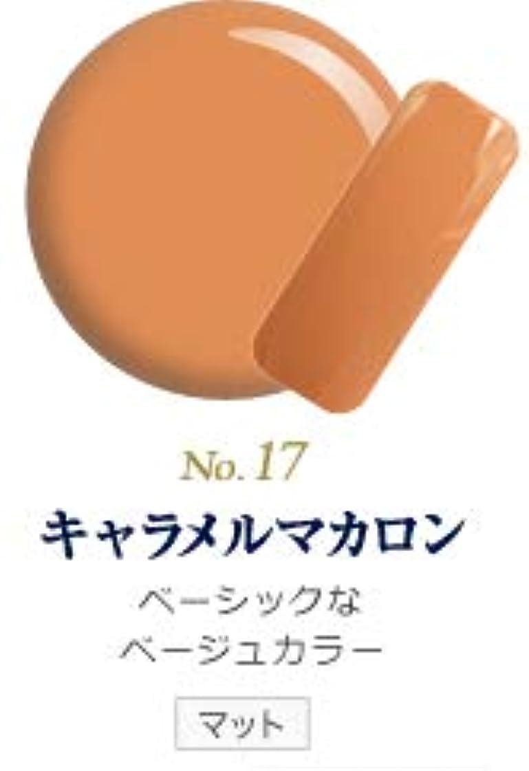 鳴らすブランデー藤色発色抜群 削らなくてもオフが出来る 新グレースジェルカラーNo.11~No.209 (キャラメルマカロン)