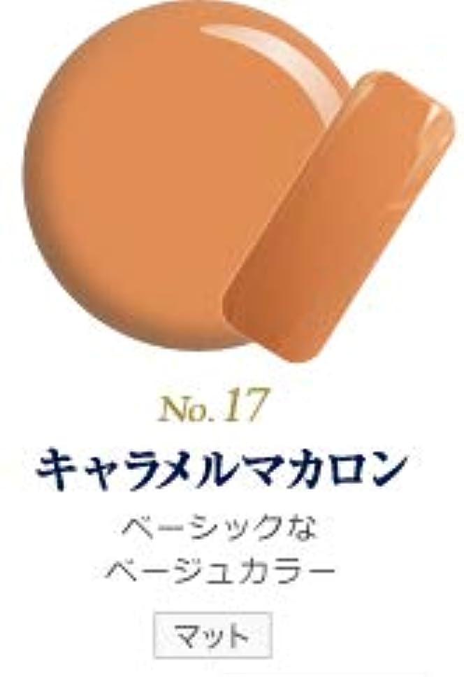 上級キャッシュ開発する発色抜群 削らなくてもオフが出来る 新グレースジェルカラーNo.11~No.209 (キャラメルマカロン)