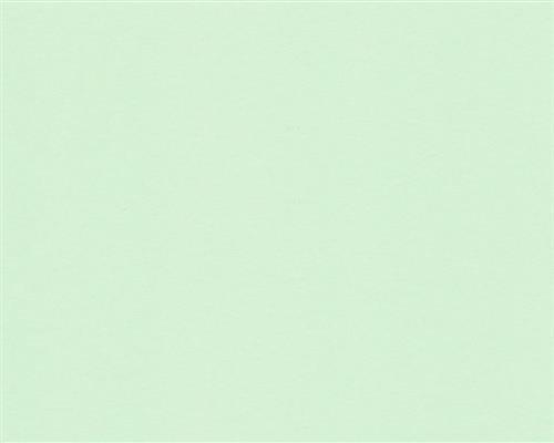 125x DIN A4 Hell-Grünes farbiges 160g/m² Office-Papier. Hochwertiges Spitzenpapier Copy Laser Inkjet Erstklassige Flyer Newsletter Poster Faxe Wichtige Mitteilungen Warnhinweise Ordnungssysteme Memos
